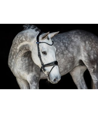 PS Of Sweden Gp Lacquered Bridle