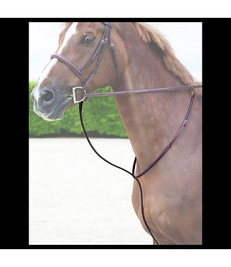Dy on Standing Martingale