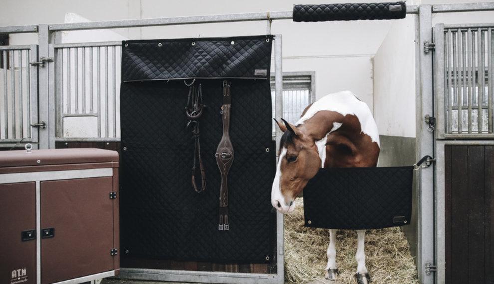 Wat te doen tijdens de lockdown : paarden editie