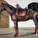 Equito Saddle pad – Cinnamon Spice