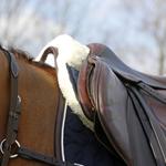 Kentucky Zadelonderlegger Sheepskin Absorb