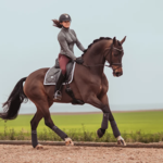 Equestrian Stockholm Saddle Pad Silver Cloud