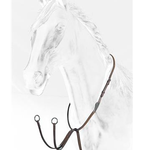 Equiline Running Martingale
