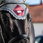 Equito Ear bonnet – Platinum Grey