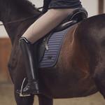 Eskadron Saddle Cloth Softshell Avantgarde