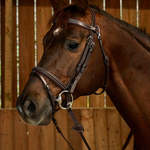 Dy on Flash Noseband Bridle With Snap Hooks Working Coll.
