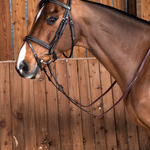 Dy on Flash Noseband Bridle Working collection