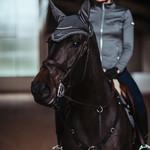 Equestrian Stockholm Ear Net No Boundaries Silver Cloud Full
