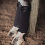 Equestrian Stockholm Fleece Polos No Boundaries Silver Cloud