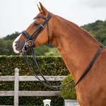 Dy on Patent Large Crank Noseband Double Bridle New English