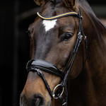 Schockemohle Stanton Select Anatomical Bridle