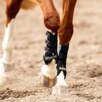 Mrs. Ros Air Flex Tendon Boots