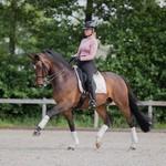 Equestrian Stockholm Fleece Polos Desert Rose