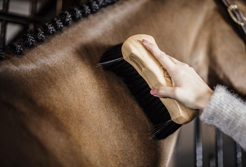 Hoe verzorg je de wintervacht van je paard