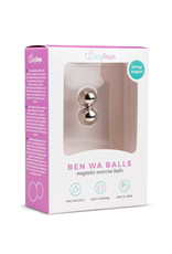 Easytoys Geisha Collection Easytoys ben Wa Ballen 12 mm - Zilverkleurig