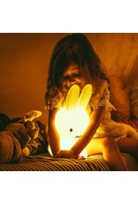 Mr Maria Miffy My first light