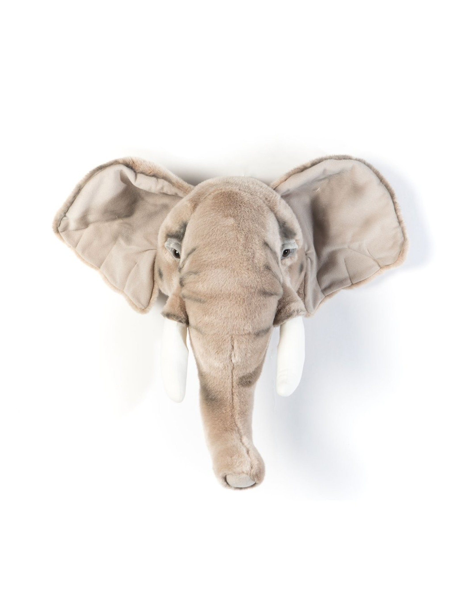 Wild & Soft Tête éléphant clair George