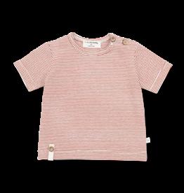 +1in the family T-shirt BLAI roibos
