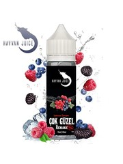 Hayvan Juice Hayvan Juice - Cok Güzel Remake - 10 ml Aroma