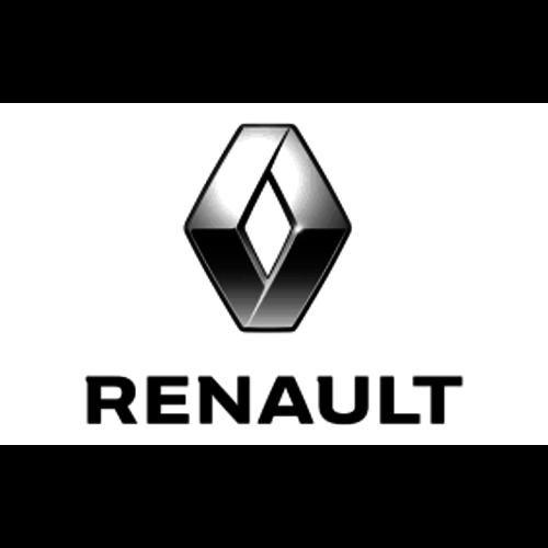 RENAULT AUTOLAK RENAULT 1K OP KLEUR GEMEND IN SPUITBUS