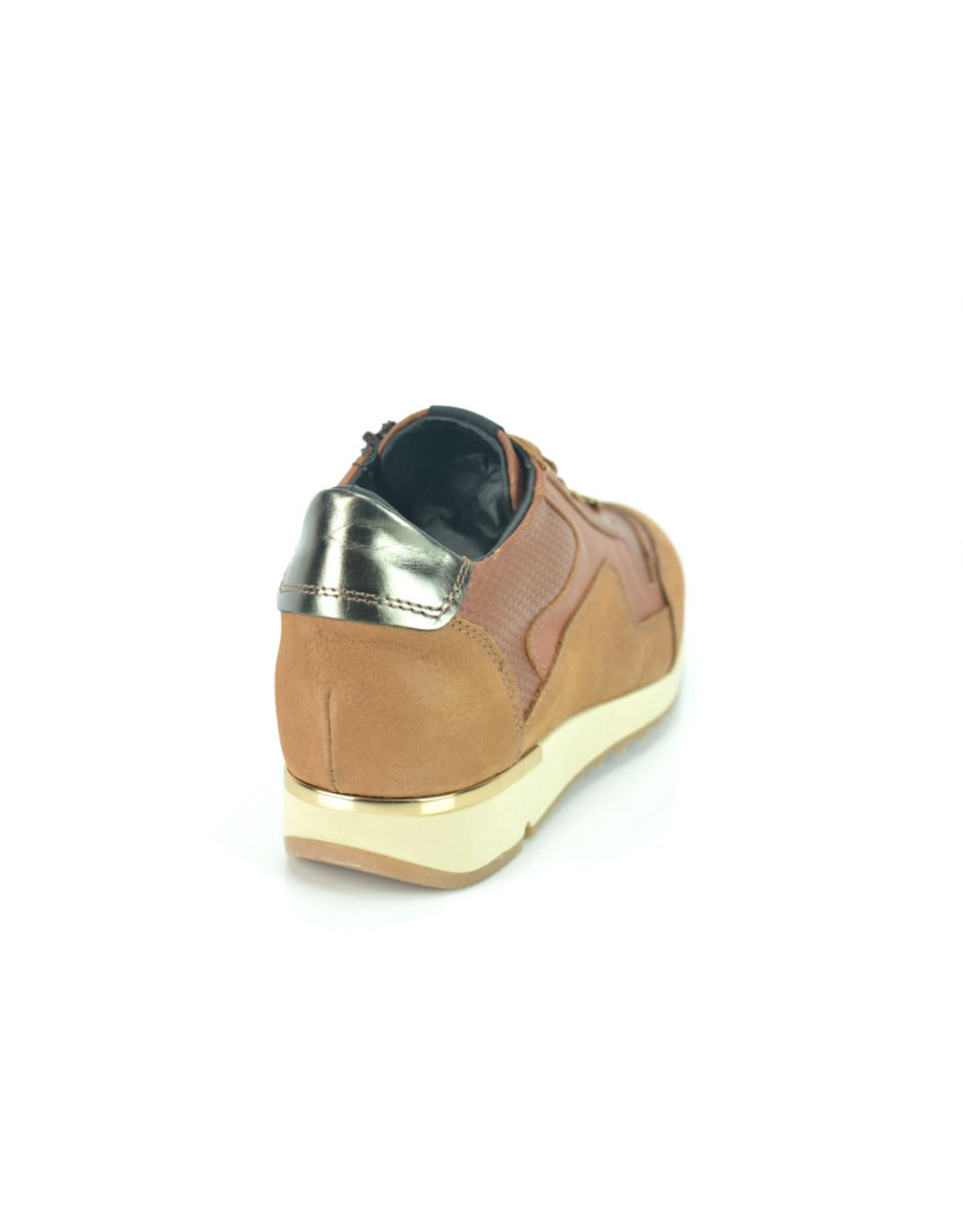 DL-Sport 8618 cognac bruin