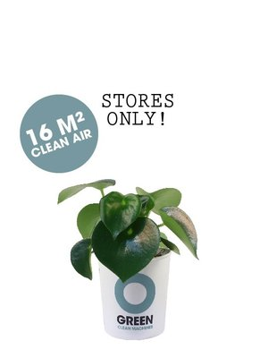 Ogreen Ogreen Legend clean machine 16 m2 clean air*
