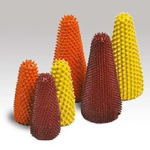 22mm x 50mm Cone