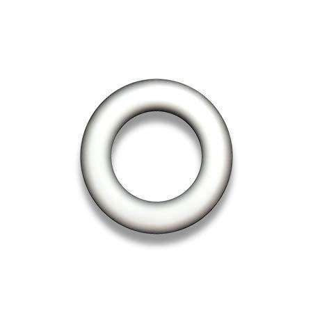 Robbins Teflon O Ring