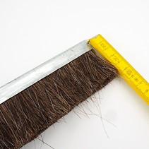 Strip Brush L = 1000 mm x 10 mm, H50mm (Horse Hair)