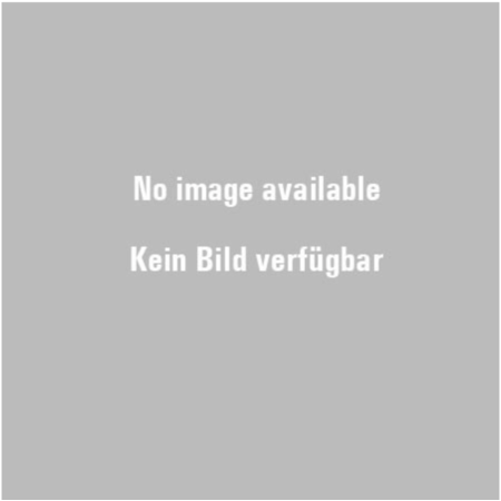 TECH RIM EASE MONTAGE SCHMIERMITTEL 209lt