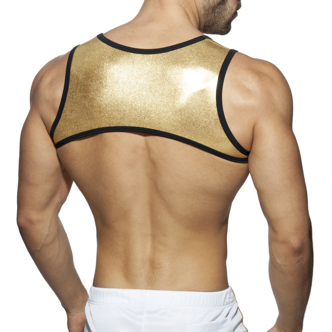 AD party stripe harness gold