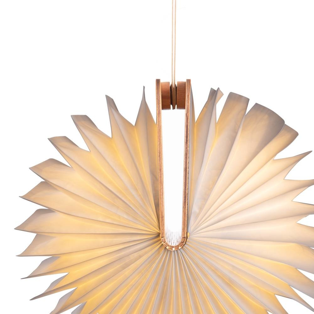 Hanging Support Book Lamp-6