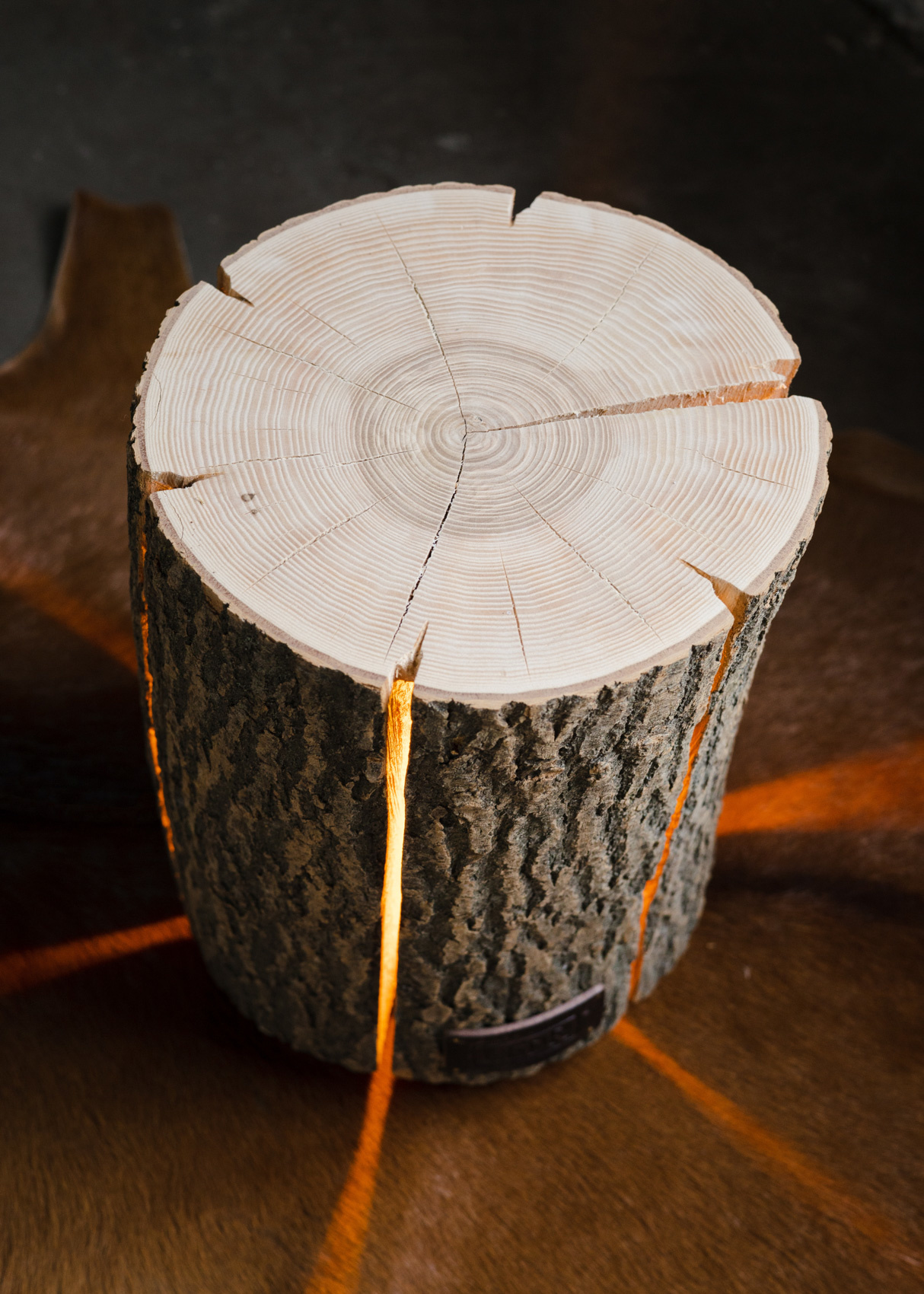 Wood Light - Ash Wood M-8