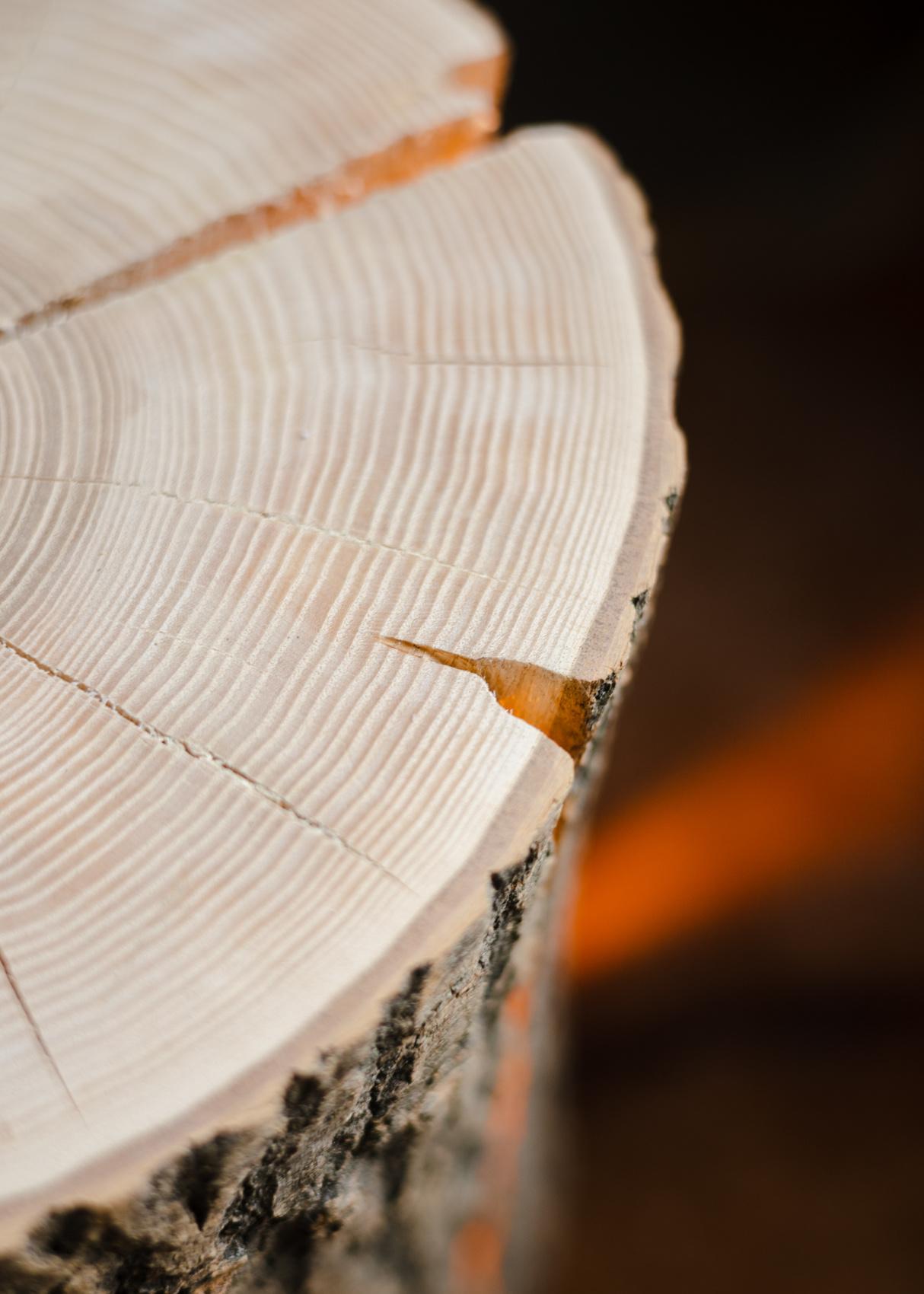 Wood Light - Ash Wood L-5