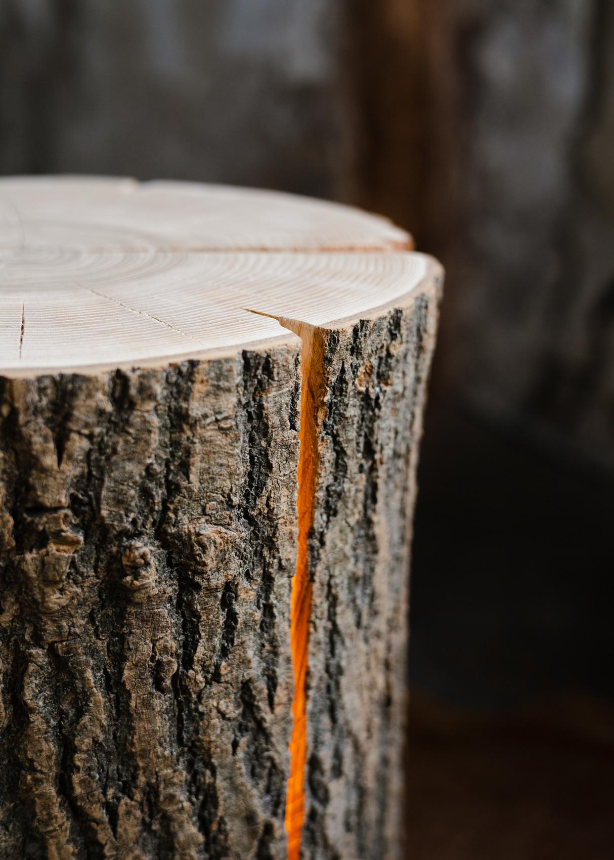 Wood Light - Ash Wood L-6