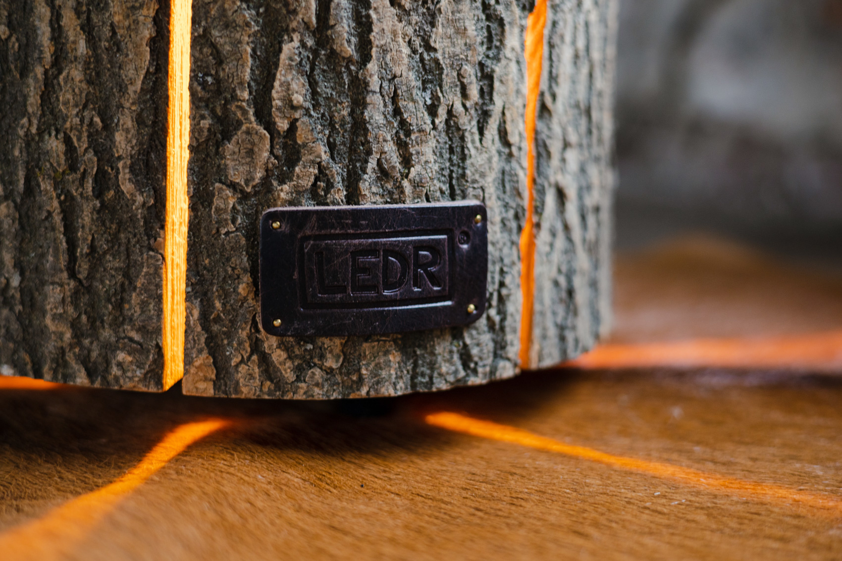 Wood Light - Ash Wood L || Leather edition-4