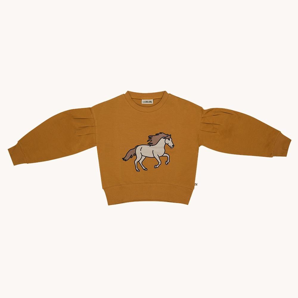 Sweaters & Longsleeves