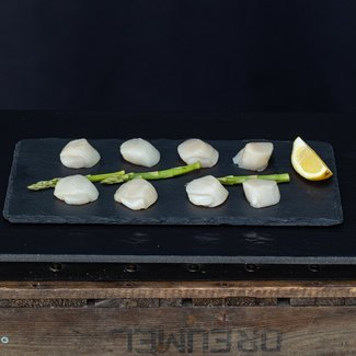 COQUILLES 20/30