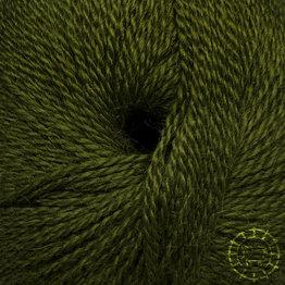 «Pascuali» – filati naturali Balayage – Aguas Calientes, Grün