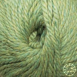 «Woolpack Yarn Collection» Baby Alpaca Bulky – Tilleul