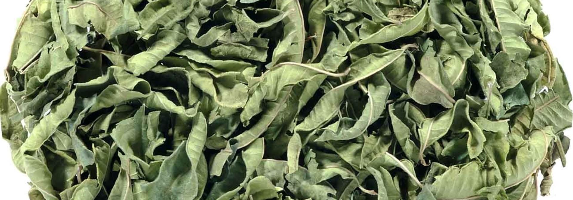 Verbeneblad