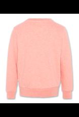 American Outfitters AO sweater zalmroze 'future' glitter opdruk