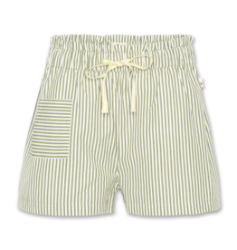 American Outfitters AO shorts lou olive