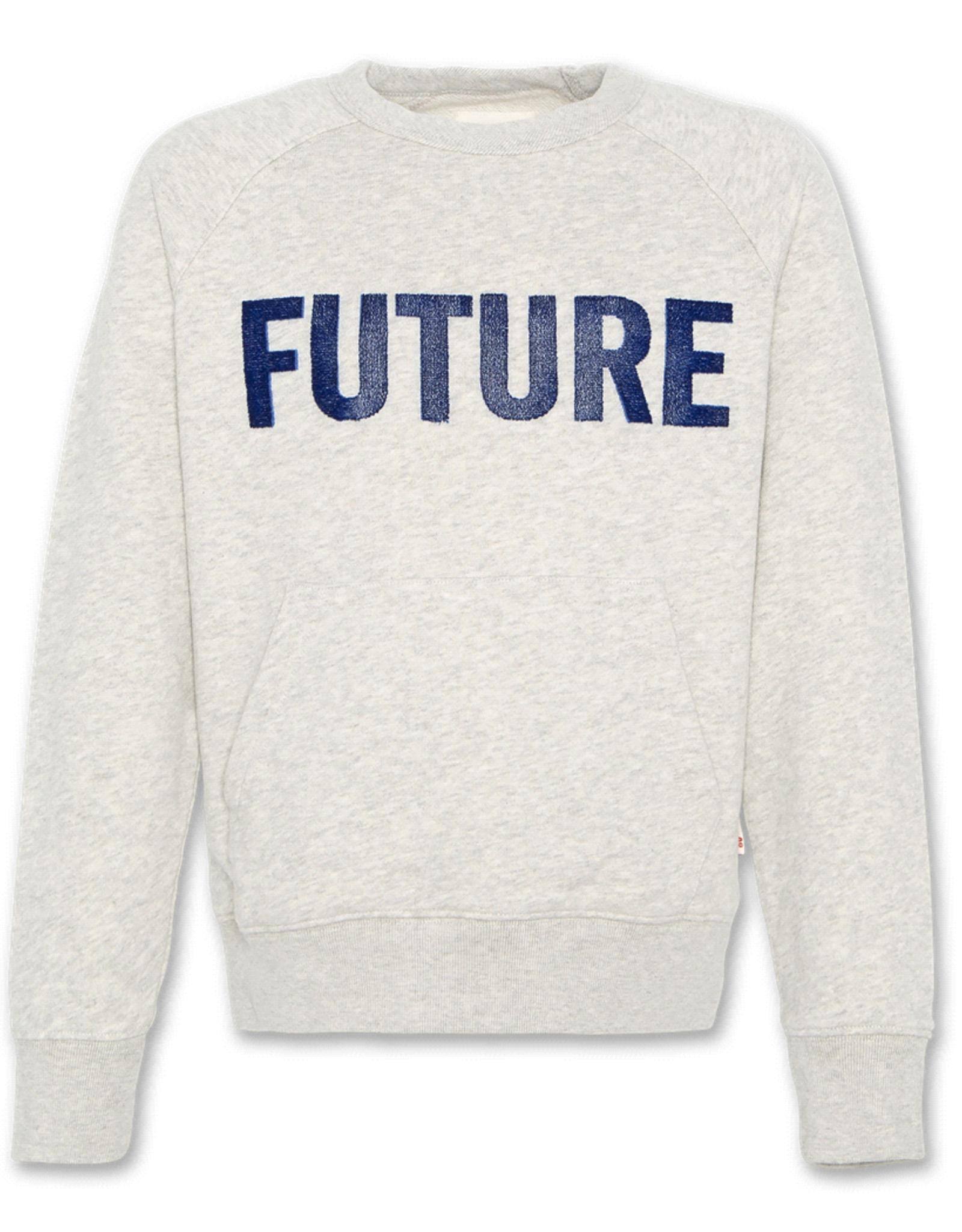 American Outfitters AO sweatshirt FUTURE gemêleerd lichtgrijs