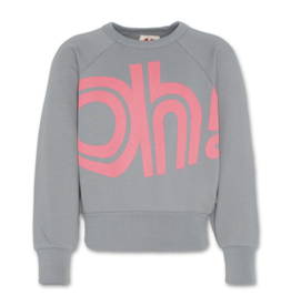 American Outfitters AO raglan sweater oh!