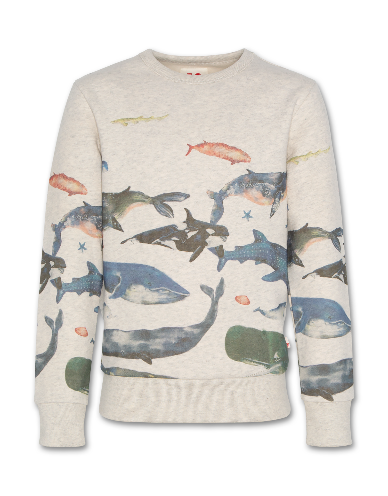 American Outfitters AO c-neck sweater Sea Oyster