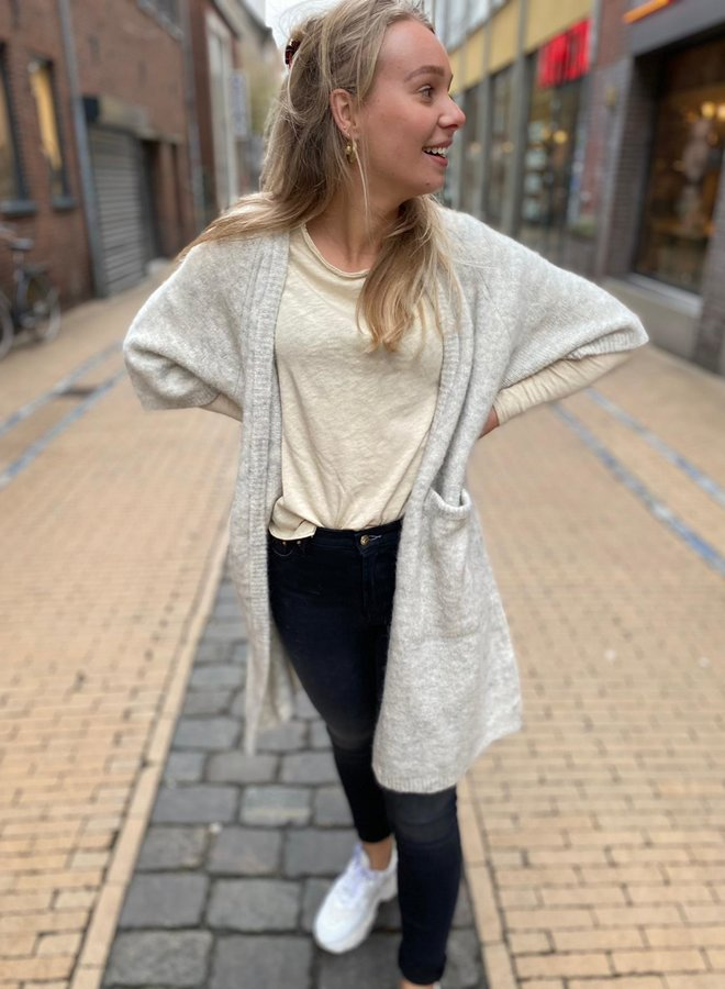 American V. son31 sweater beige