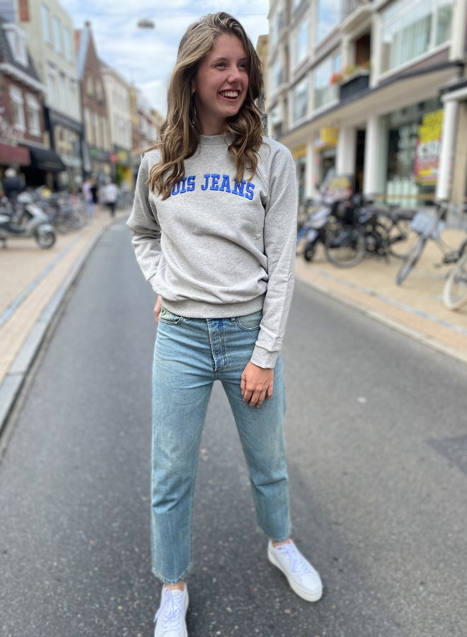 Lois sweater iris grey