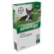Bayer Bayer advantage hond 4 pipetten