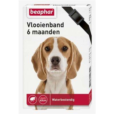 Beaphar Beaphar vlooienband hond zwart 6 mnd